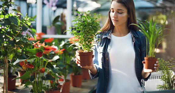 Customer retention by churn analytics for leading garden supplies company